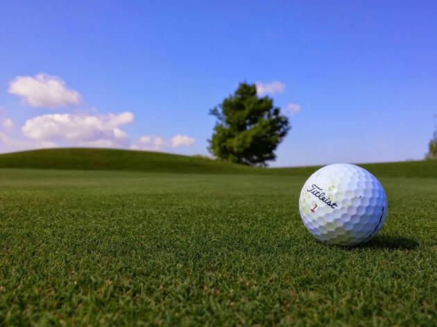 新人に注目することがゴルフ観戦を長く楽しみコツ