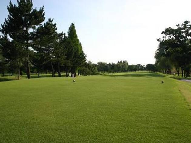 新宿から40分のゴルフ場「大宮国際カントリークラブ」