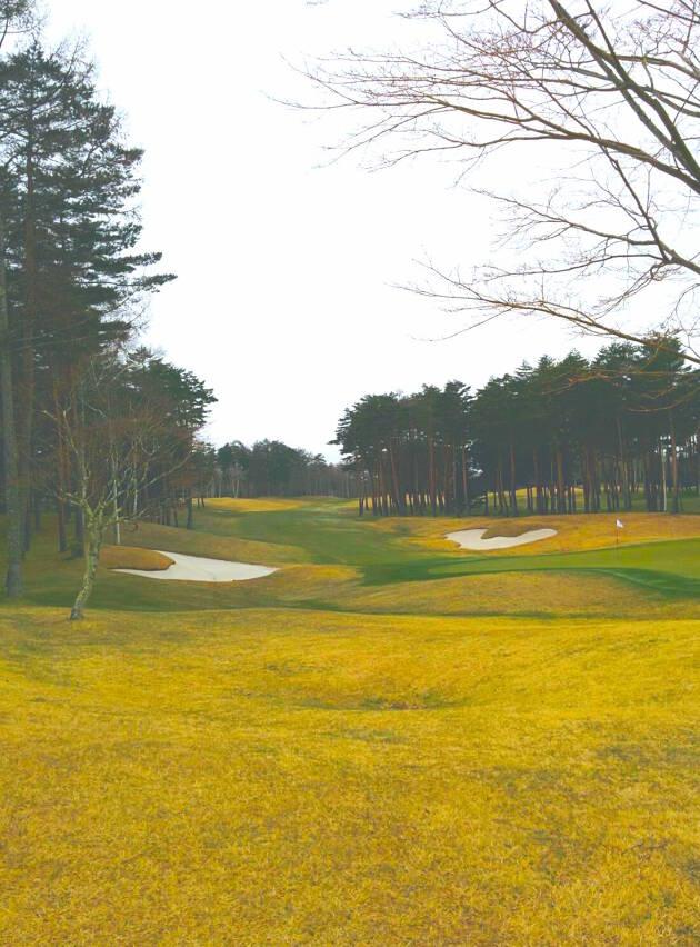 フェアウェイはフカフカで最高『鳴沢ゴルフ倶楽部』
