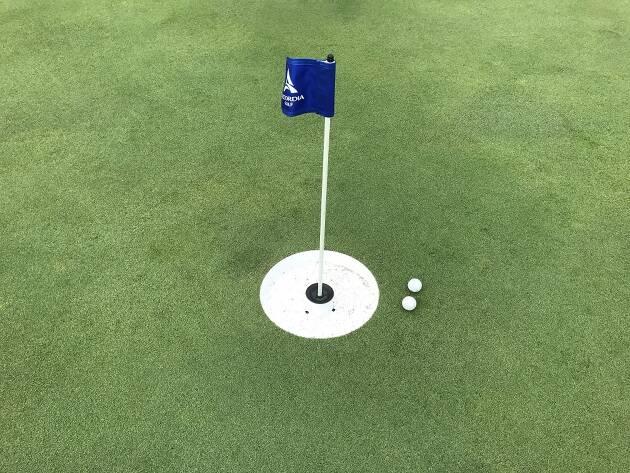 直径15インチ(約381ミリ)のカップ目がけて打つ!