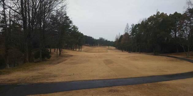 グリーン次第でトーナメントコースにいつでもなりうるゴルフ場