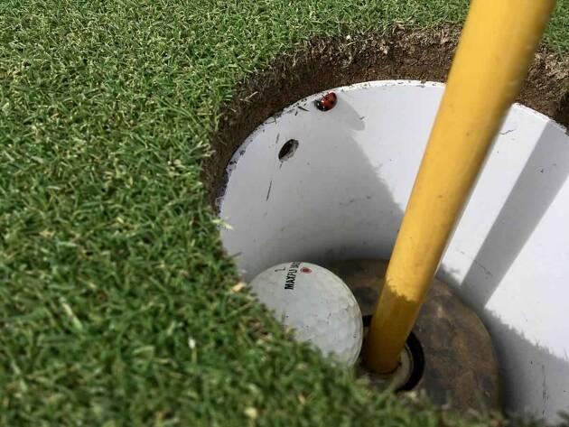 道具が主体のモダンゴルフ