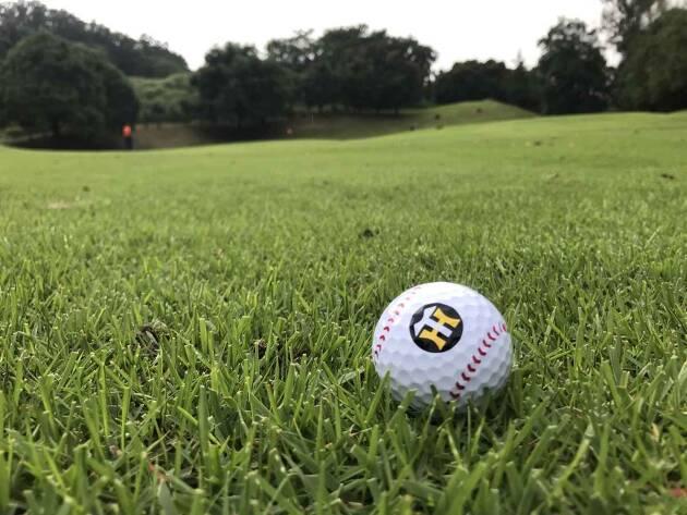 ところで、タイガースファンってゴルフファンが多くないですか?