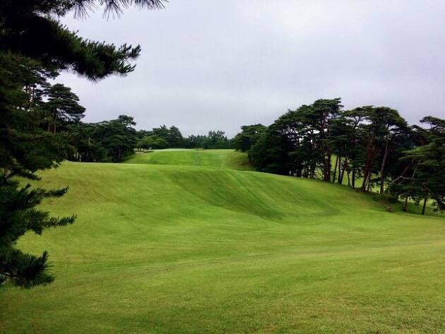 ヒッコリーゴルフには、歴史あるゴルフ場がいい