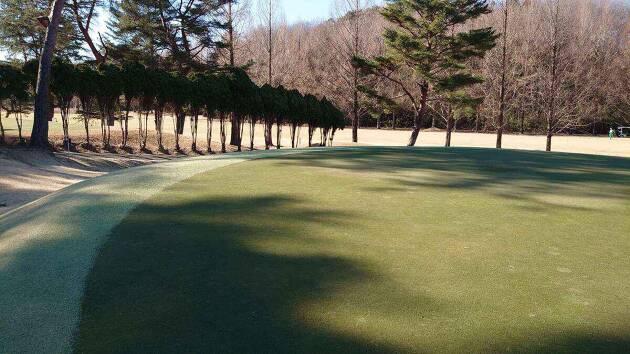 この日のスタートの気温は氷点下4°でグリーンはもちろん、コースは凍っていました!