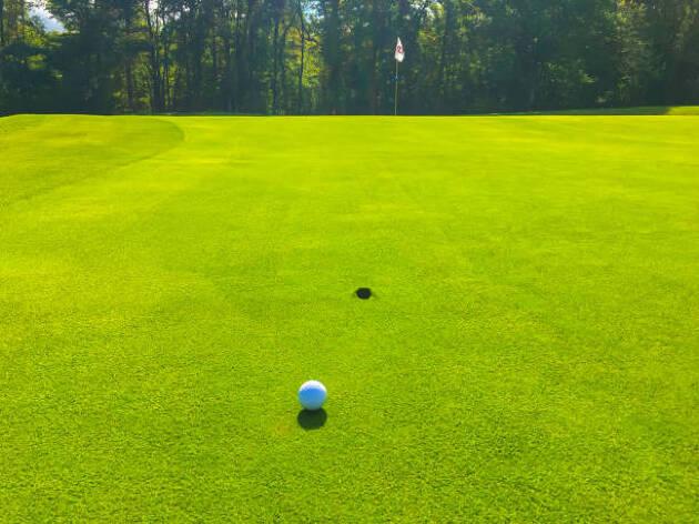芝目の影響を軽減する