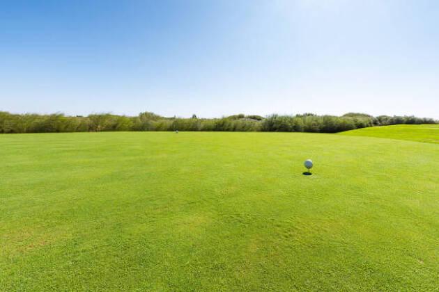 参加のゴルフ場は11コース