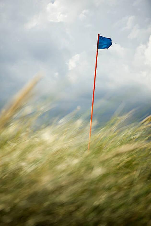風の中のプレー