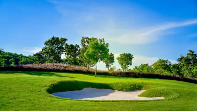ゴルフ人口の現状と影響