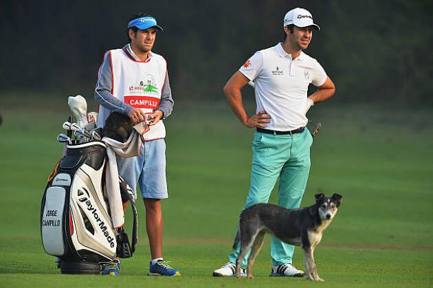 愛犬同伴OKのゴルフ場もあります