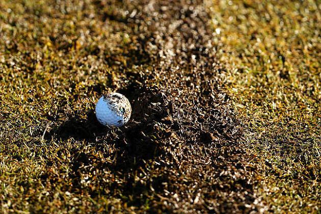 ボールが泥にめり込んでいたらピックアップ!