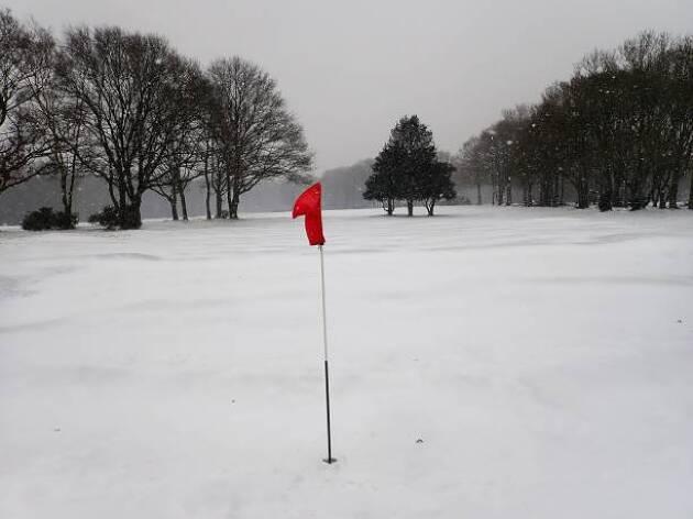 冬ゴルフでのコースマネージメント
