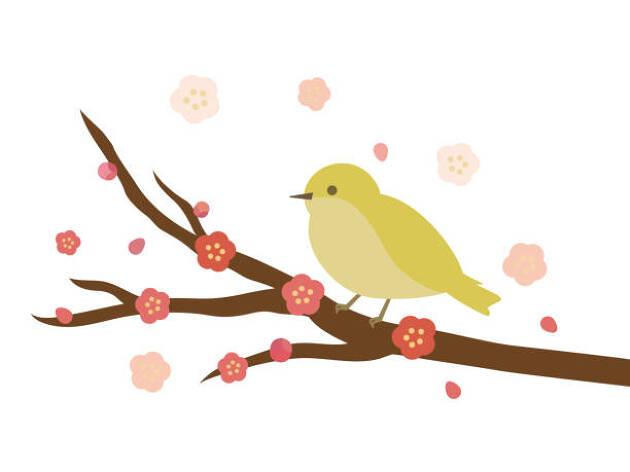 3.花や鳥の鳴き声と癒しが満載