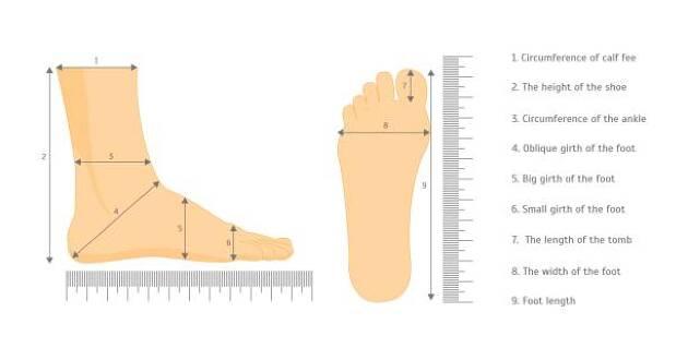 身長と足サイズについて
